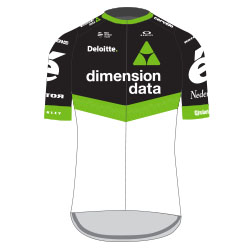 Team-Dimension-Data